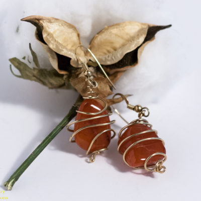 Earrings: Carnelian in 1/20 Gold Filled Wire Cage